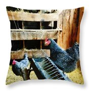 In The Chicken Coop Throw Pillow
