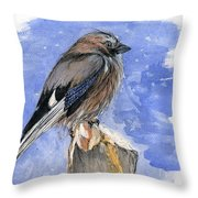 In The Cold Winter Night Throw Pillow