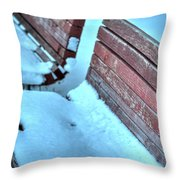 In The Coldest Of Days...i Still Wait... Throw Pillow