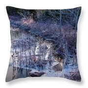 In The Corner Of The Pond Throw Pillow