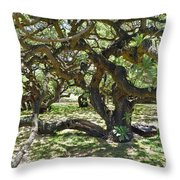 In The Depth Of Enchanting Forest I Throw Pillow