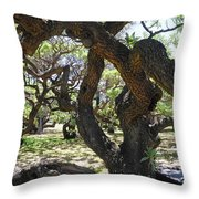 In The Depth Of Enchanting Forest IIi Throw Pillow