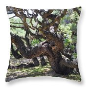 In The Depth Of Enchanting Forest Vi Throw Pillow