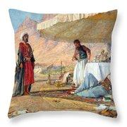 In The Desert Of Mount Sinai Throw Pillow