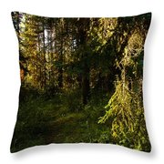 In The Druid Cathedral Throw Pillow