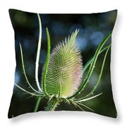 In The End Throw Pillow