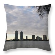 In The Eveninglight Throw Pillow