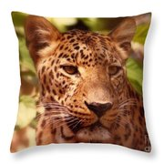 New Orleans In The Eyes Of The Leopard Throw Pillow
