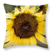 In The Face Of Maximilian Throw Pillow