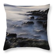 In The Fading Light Throw Pillow