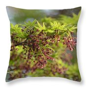In The First Light Throw Pillow