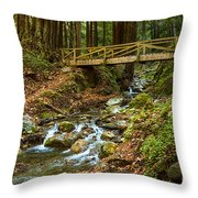 In The Forest - Limekiln State Park In California Throw Pillow