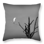 In The Forest - Black And White Throw Pillow
