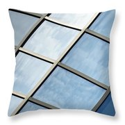In The Frame Throw Pillow