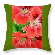 In The Garden. Geranium Throw Pillow