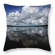In The Good Old Summertime  Throw Pillow