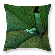 In The Groove Throw Pillow