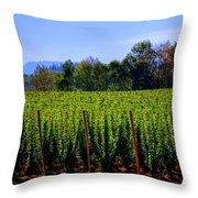 In The Grow 16080 Throw Pillow