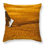 In The Infield Throw Pillow