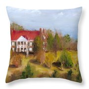 In The Land Of Cotton Throw Pillow