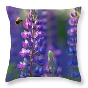 In The Land Of Lupine Throw Pillow by Mary Amerman