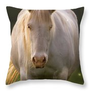 In The Land Of  Unicorns Throw Pillow