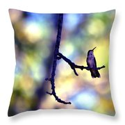In The Last Of The Light Throw Pillow