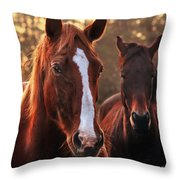 In The Last Rays Of The Sun Throw Pillow