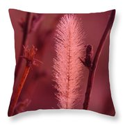 In The Late Winter Cold Throw Pillow