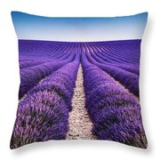 In The Lavender Throw Pillow