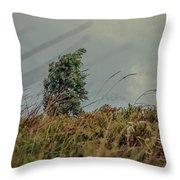 In The Middle Of The Storm Throw Pillow