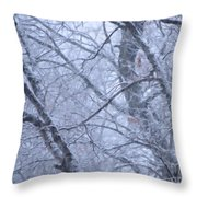 In The Midst Of Majesty Throw Pillow