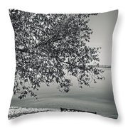 In The Moments When We Breathe Throw Pillow
