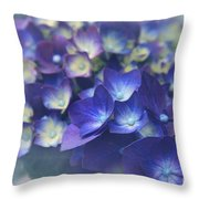 In The Morning Mists Throw Pillow