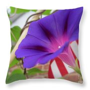 In The Morning - Summertime Throw Pillow