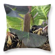 In The Nest Throw Pillow