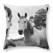 In The Open Air . . .  Throw Pillow