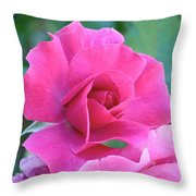 In The Pink Throw Pillow by Rona Black