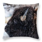 In The Presence Of  Bison - 6 Throw Pillow
