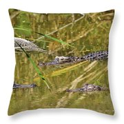 In The Reflection Throw Pillow