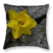 In The Rocks Throw Pillow