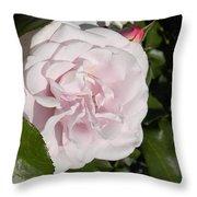 In The Rose Garden Throw Pillow