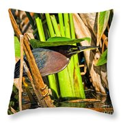 In The Shade Little Green Heron Throw Pillow