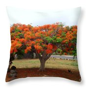 In The Shade Of The Poincianas Throw Pillow