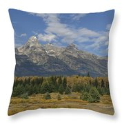 In The Shadow Of The Tetons Throw Pillow