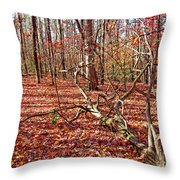 In The Shadows Of Fall 1 Throw Pillow