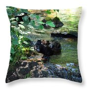In The Shadows Of The Creek Throw Pillow