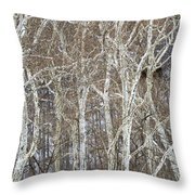 In The Sycamores Throw Pillow