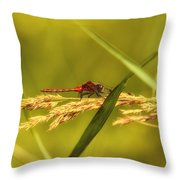 In The Tall Grass Throw Pillow