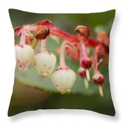 In The Underworld Of Great Beauty Throw Pillow